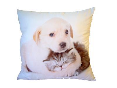 Dekorativní fotopolštářek Dadka Pejsek objímající kotě
