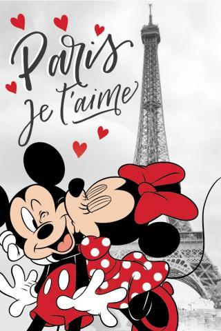 Dětská fleecová deka MM in Paris