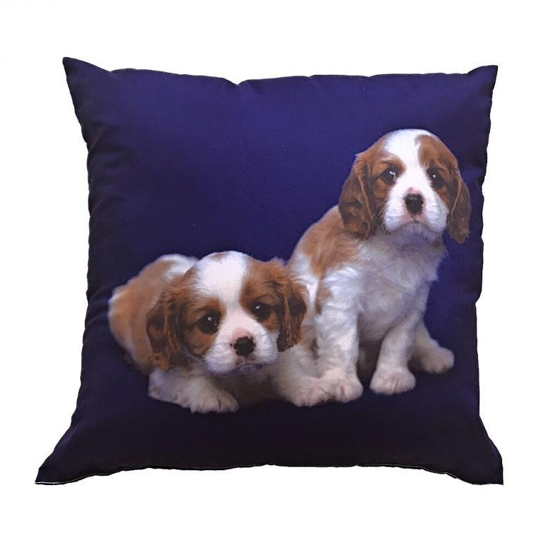Fotopolštářek Dva béžovohnědí psi