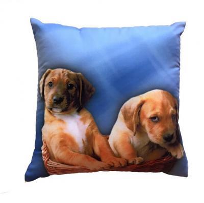 Fotopolštářek Dvě štěňata na modrém