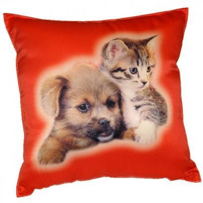 Fotopolštářek Kotě a pes na červeném