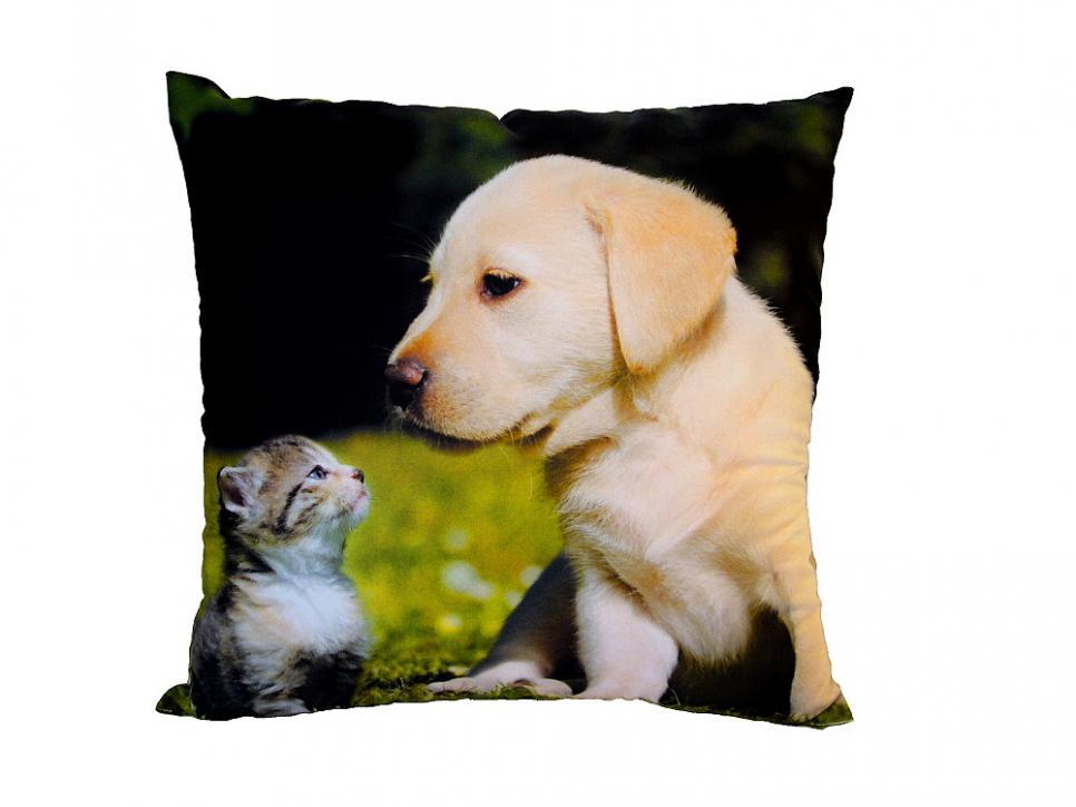 Fotopolštářek Kotě a štěně na trávě