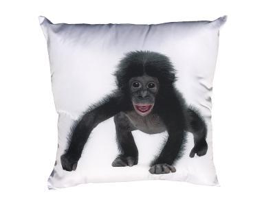 Fotopolštářek Opičák