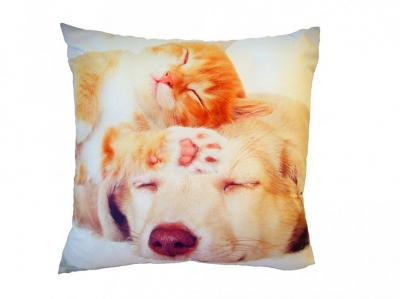 Fotopolštářek Spící kočka se psem