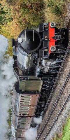 Osuška Parní vlak 70x140 cm