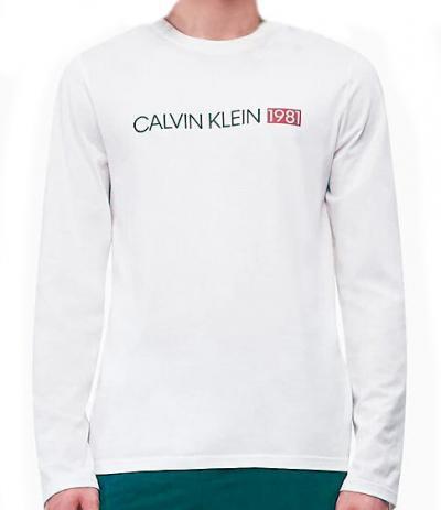 Pánské tričko Calvin Klein NM1705E