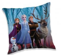 Polštářek Frozen 2 in forest